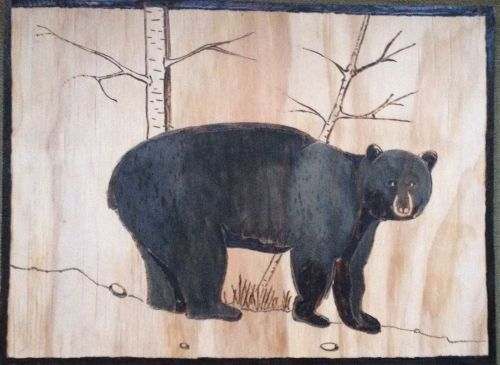 The Bear IMG_0578